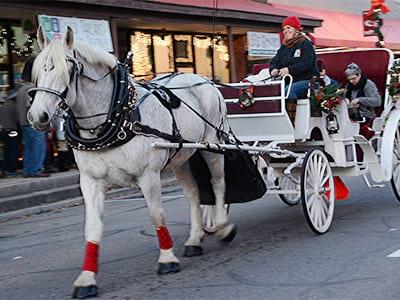 Franklin Nc Christmas Parade 2020 Winter Wonderland | Franklin NC Festivals & Events